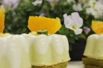 春色を感じるピスタチオ、いちごの新作ケーキのご案内です!