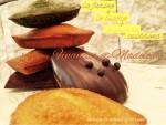 人気の焼き菓子、フィナンシェとマドレーヌコレクションを一挙公開です